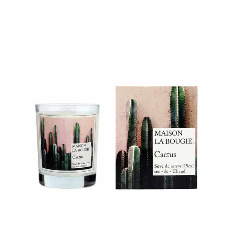 Cactus Scented Candle by Maison La Bougie