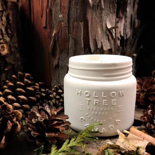 Hollow Tree - Library of Trees Candle
