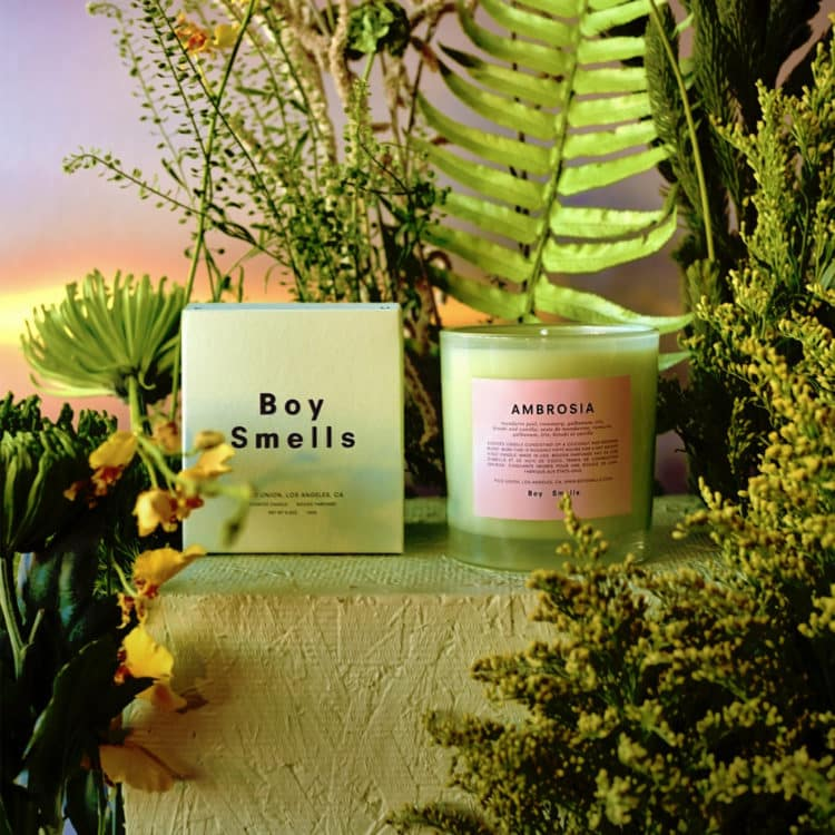 Ambrosia Scented Candle by Boy Smells